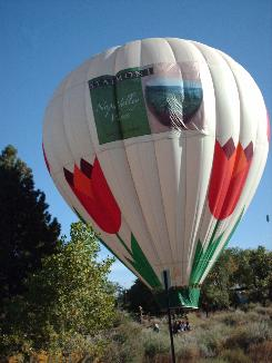 The Bloomin Balloon has touched down and remains inflated to aid recovery by the chase crew.
